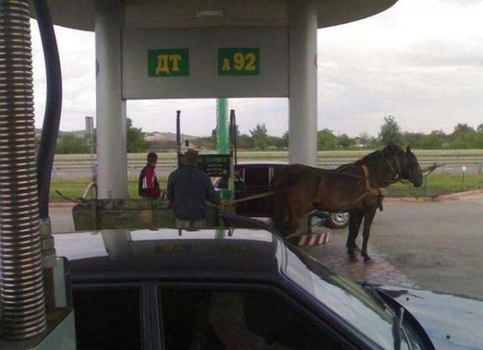 Мужчина приехал подзаправить своих лошадок.