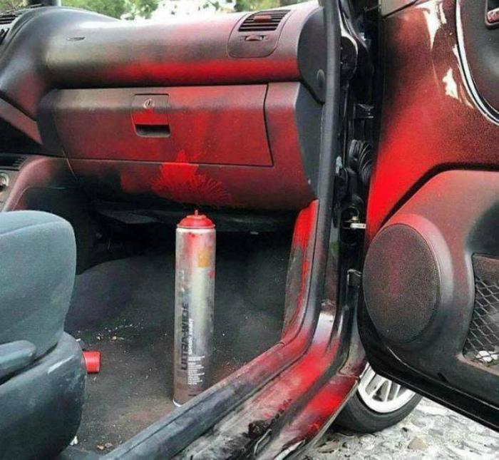 Сюрприз в машине. | Фото: Daily LOL Pics.
