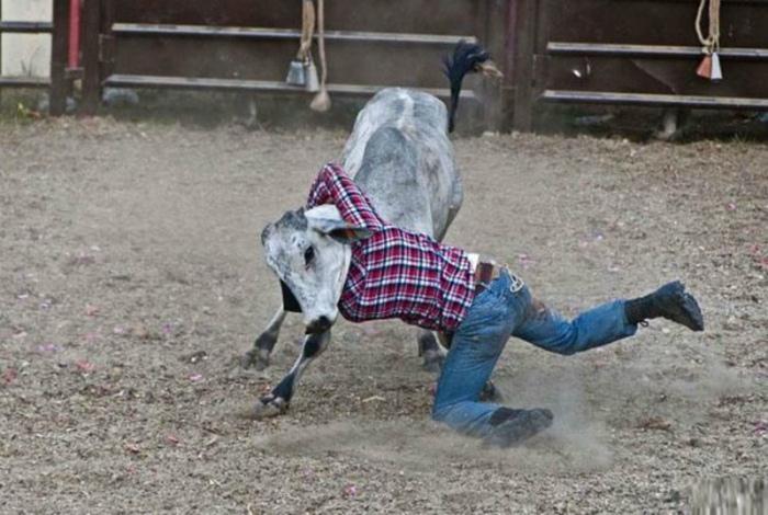 Я вижу человека с головой коровы...