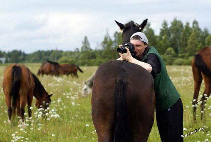 Лошадь вместо штатива. | Фото: WarNet.ws.