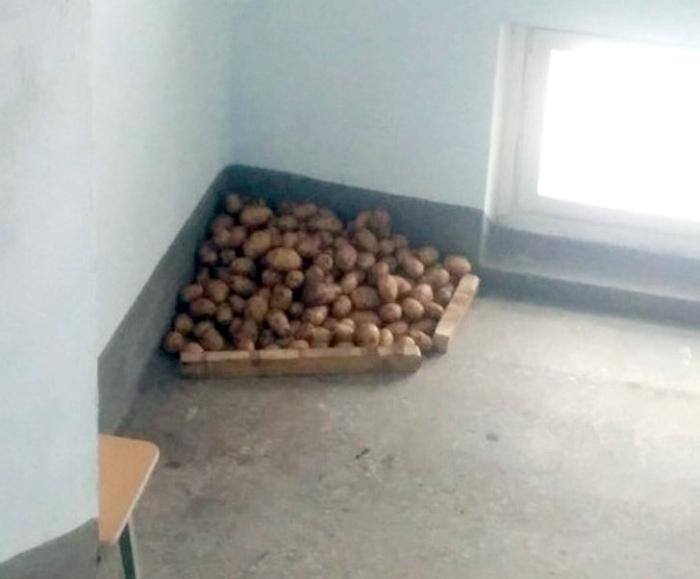 Склад картошки в подъезде.