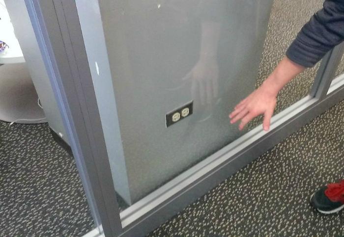 Смотреть можно, трогать нельзя! | Фото: Reddit.