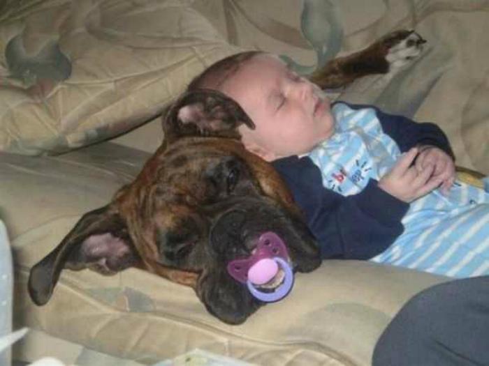 Спящие малыши.