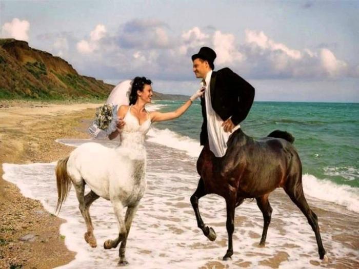 Никогда не заказывайте на свадьбу безголовых лошадей.