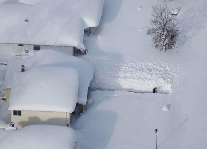 Зима любит труд!. | Фото: Twitter.