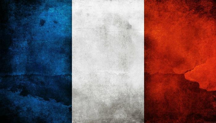 Франция занимает 7 место в списке стран вырабатывающих электроэнергию с помощью солнечных электростанций.