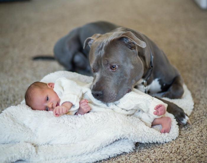 Поклонники младенцев номер один.