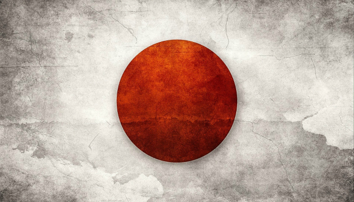 Япония занимает 4 место в списке стран вырабатывающих электроэнергию с помощью солнечных электростанций.