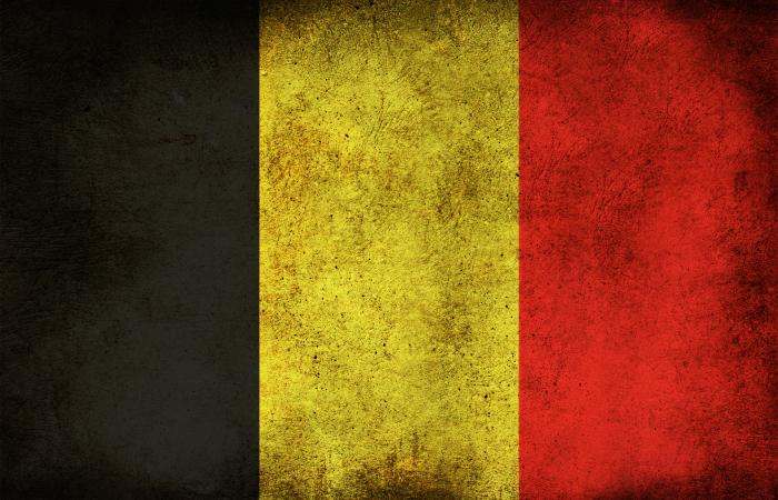 Бельгия занимает 10 место в списке стран вырабатывающих электроэнергию с помощью солнечных электростанций.