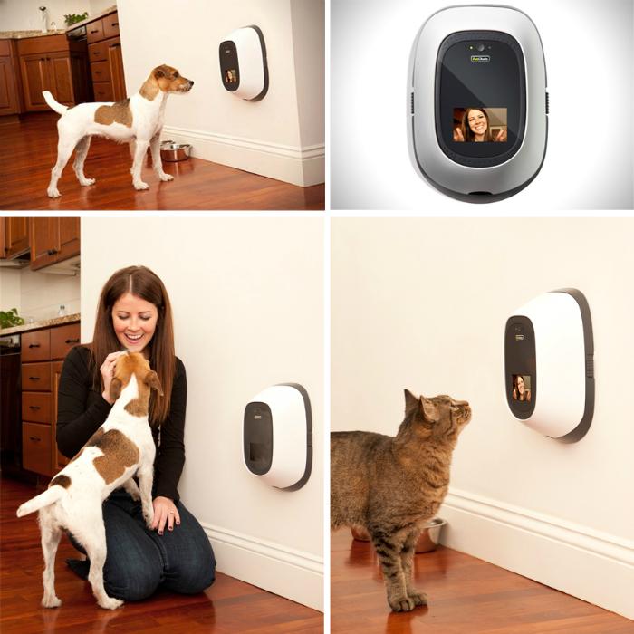 Удобный видео домофон для домашних любимцев под названием - PetChatz.