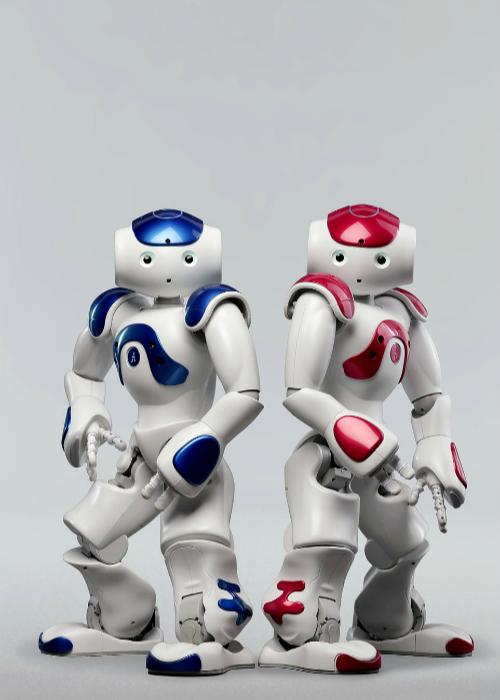 Гуманоидный робот NAO H25 Next Gen