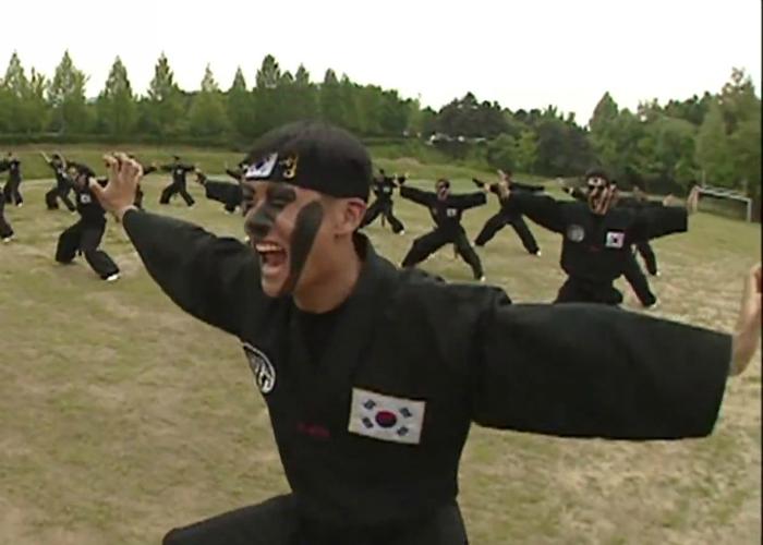 Отряд специального назначения Белый Тигр, Корея.