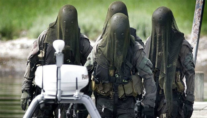 Отряд специального назначения, Дания.