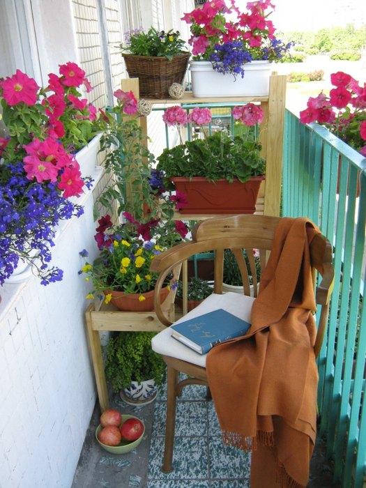 Много цветов на балконе