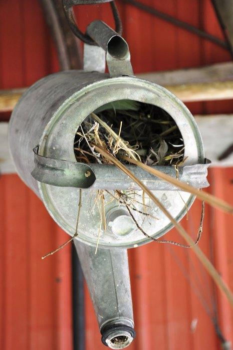 Сделать домик для птиц можно даже из старой лейки