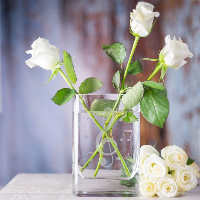 Безупречно красивые розы