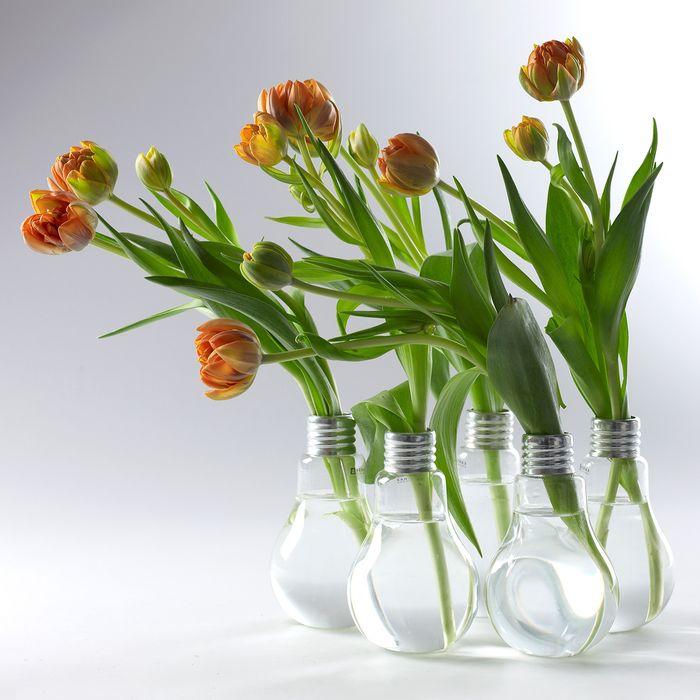 Лампочки-вазы