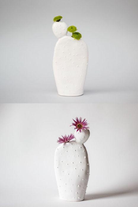 Забавные кактусы