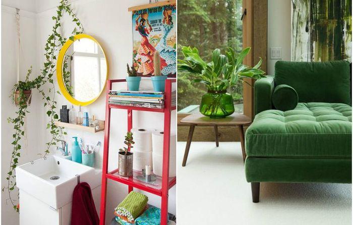 Зелёный декор дома: 10 очаровательных идей, которые стоит взять на заметку