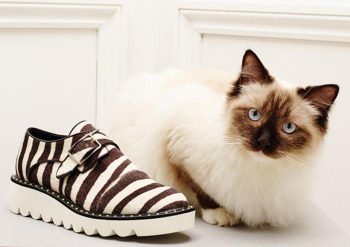 Обувь из новой коллекции Стеллы Маккартни