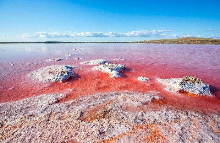 Розовое солевое озеро в Крыму. Автор фото: Сергей Анашкевич