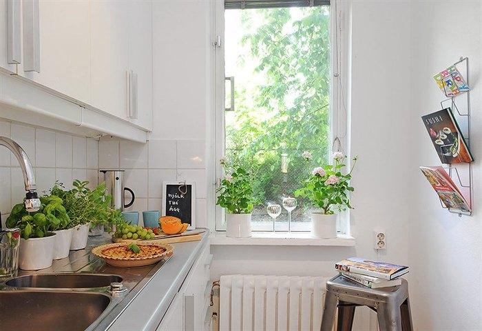 Мини-огород на кухне