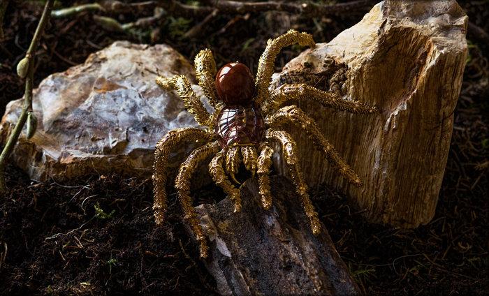 Золотой паук Hemmerle