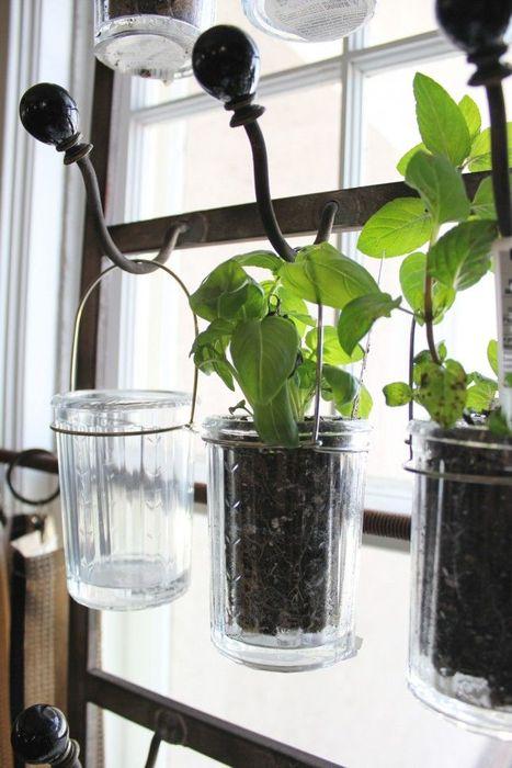Обычные гранёные стаканы вместо горшков
