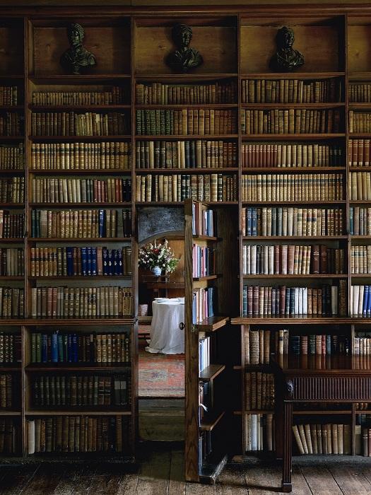 Отличный вариант оформления комнаты для чтения книг.