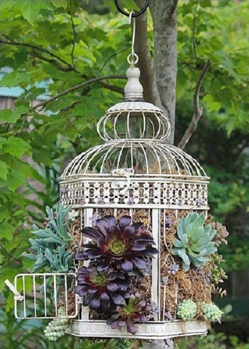 Хороший вариант использовать старую клетку для создания просто отличного украшения для сада или же двора.