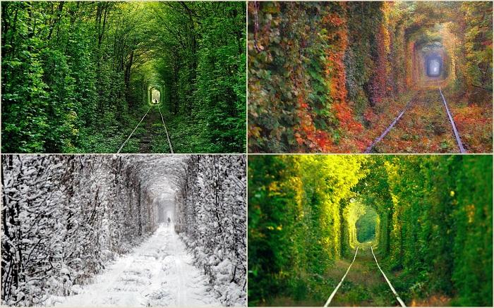 Недалеко от города Клевань, что в Ровенской области, находится одно из самых романтичных мест Украины – заброшенный железнодорожный путь длиной в два километра именуемый Тоннель любви.