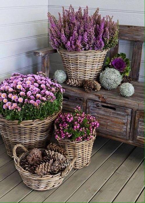 То что точно понравится - это интересные варианты плетеных кашпо, что создадут просто интересную и яркую обстановку в любом дворе.