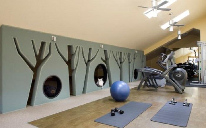 Игривая необычная перегородка в домашнем спортзале создаст отличную атмосферу.