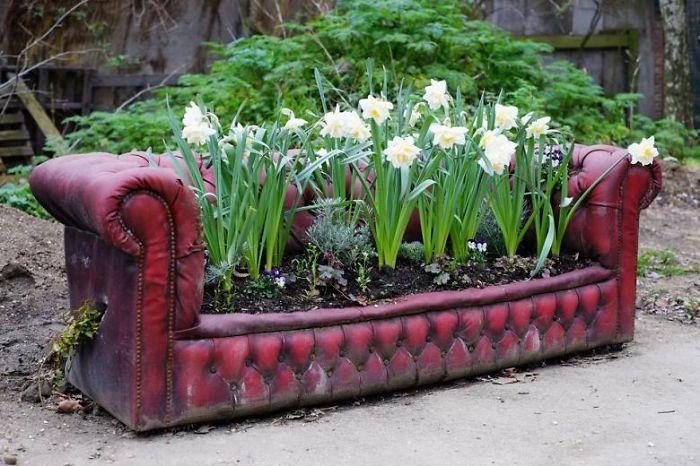 Цветочный рай просто взял и расположился на старинном диване - нестандартное решение для сада.