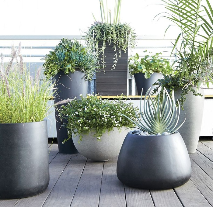 Прекрасный вариант оформить пространство при помощи темно-серых кашпо, что подарят только хорошее настроение.