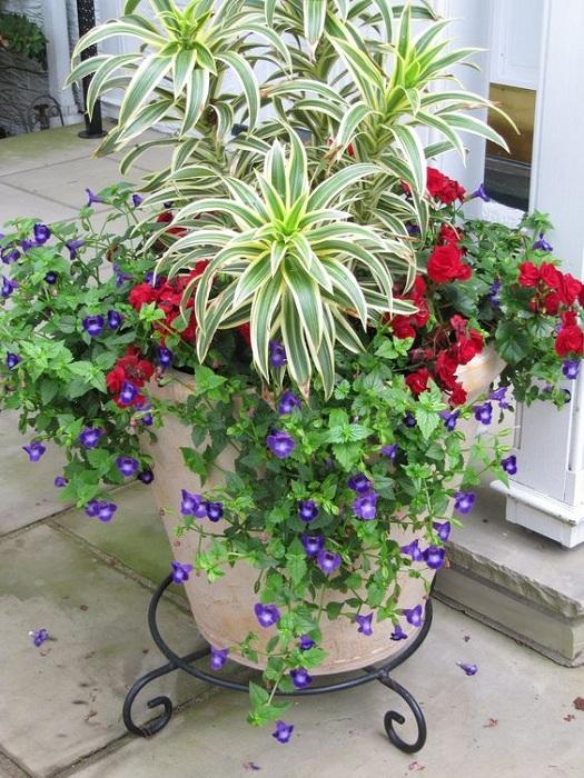 Оригинальный вариант создания просто хорошего настроения в саду при помощи отличного оформления кашпо.