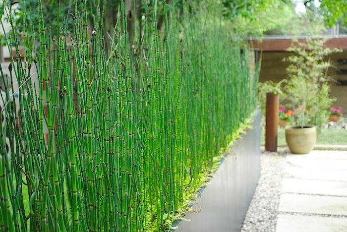 Простое, но красивое оформление двора при помощи большого и продольного кашпо, который не просто порадует, но создаст просто отличное настроение.