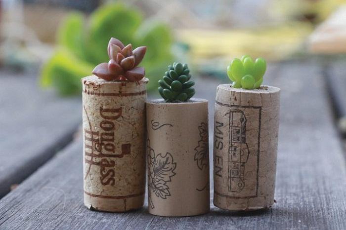 Отличный вариант создать прекрасный мини-сад дома при помощи винных пробок.