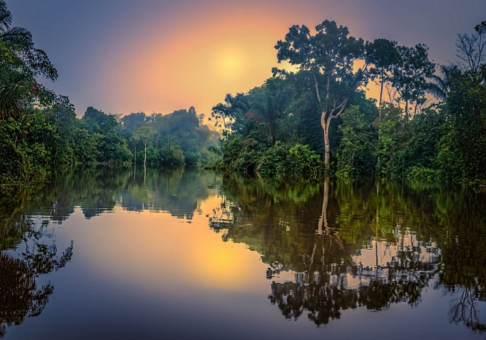 Тропические джунгли Амазонки, Бразилия.