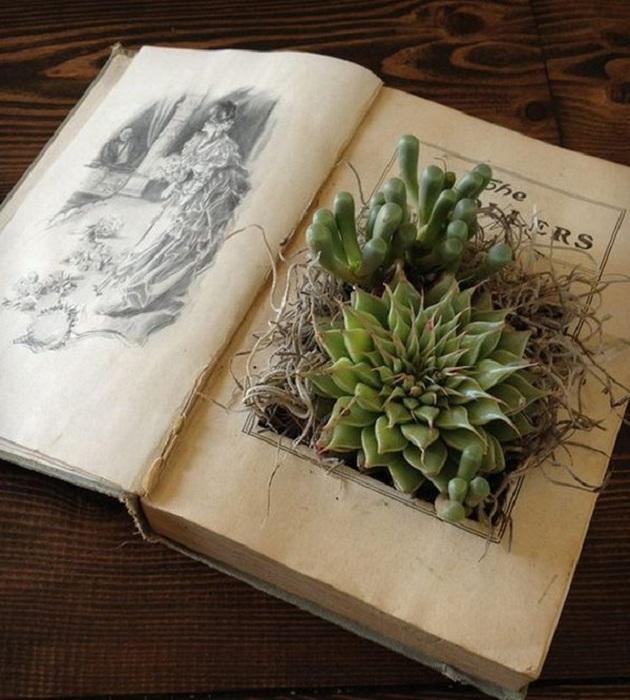 Интересный вариант горшочек создан из книги, простое и интересное решение.