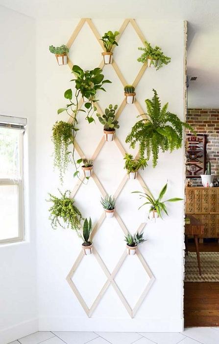 Отличное решение для украшение комнаты – это создать подвесной мини-сад на стене.