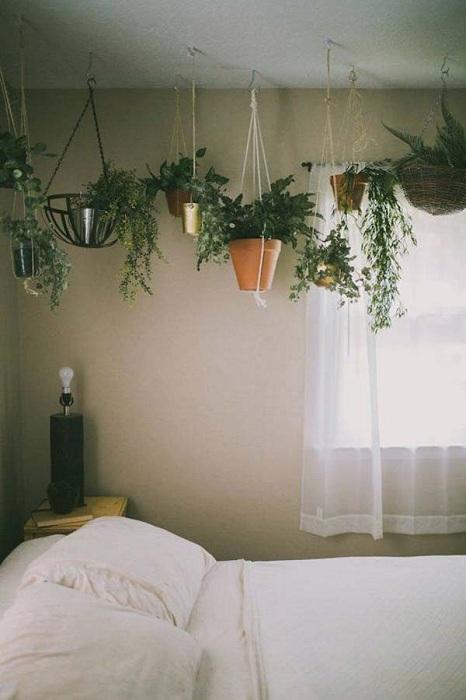 Хорошенький вариант оформления мини-сада в гостиной или в спальной – в подвешенном состоянии.