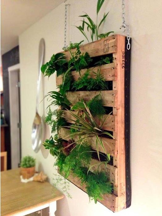 Хороший вариант оформления мини-сада на стене в европоддоне.