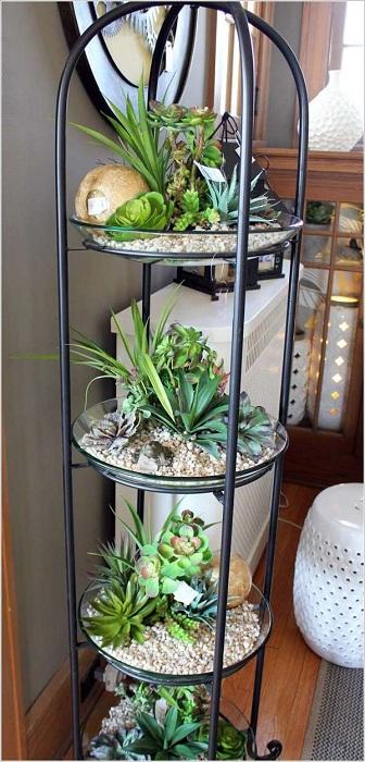 Симпатичный вариант многоуровневый мини-сад, который придется по душе каждому любителю комнатных растений.