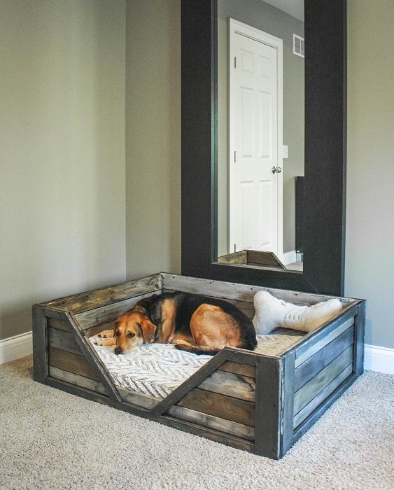 Возможно создать уютное место для пушистых друзей в любой комнате дома.