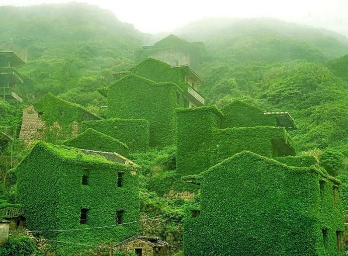 Рыбацкая деревня на китайской реке Янцзы, которая забыта. Здания покрыты зеленью, что добавляет особой атмосферы.