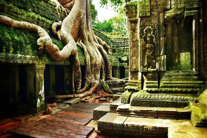 Был заброшен после падения империи и стал одним целым с джунглями. Сегодня руины находятся под присмотром в целях поддержания храма.
