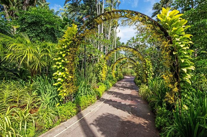Этот 150-летний Ботанический ориентир представляет собой влиятельный фрагмент национальной истории садоводства.