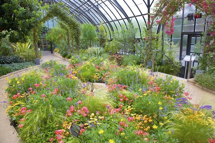 Красивый ботанический сад ежегодной витриной которого являются такие экспонаты как «Орхидея феерия» и «Лонгвуд Рождество».