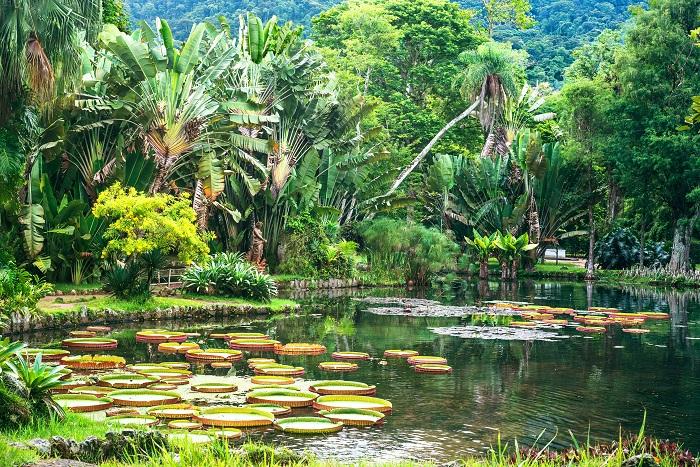Ботанический сад с более чем 8000 экзотических растений, был основан принцем-регентом Жуаном обратно в 1808 году.